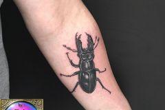 Scarabée lucane tatoué à l'intérieur d'un avant-bras