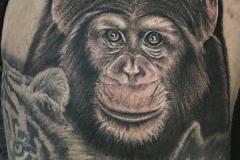 Tatouage chimpanzé