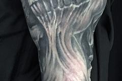 Tatouage crânes bras complet