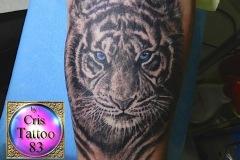 Tatouage tigre avant-bras