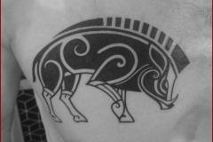 tatouage sanglier wild boar tattoo celtic