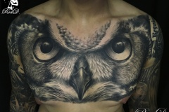 Tatouage hibou chest
